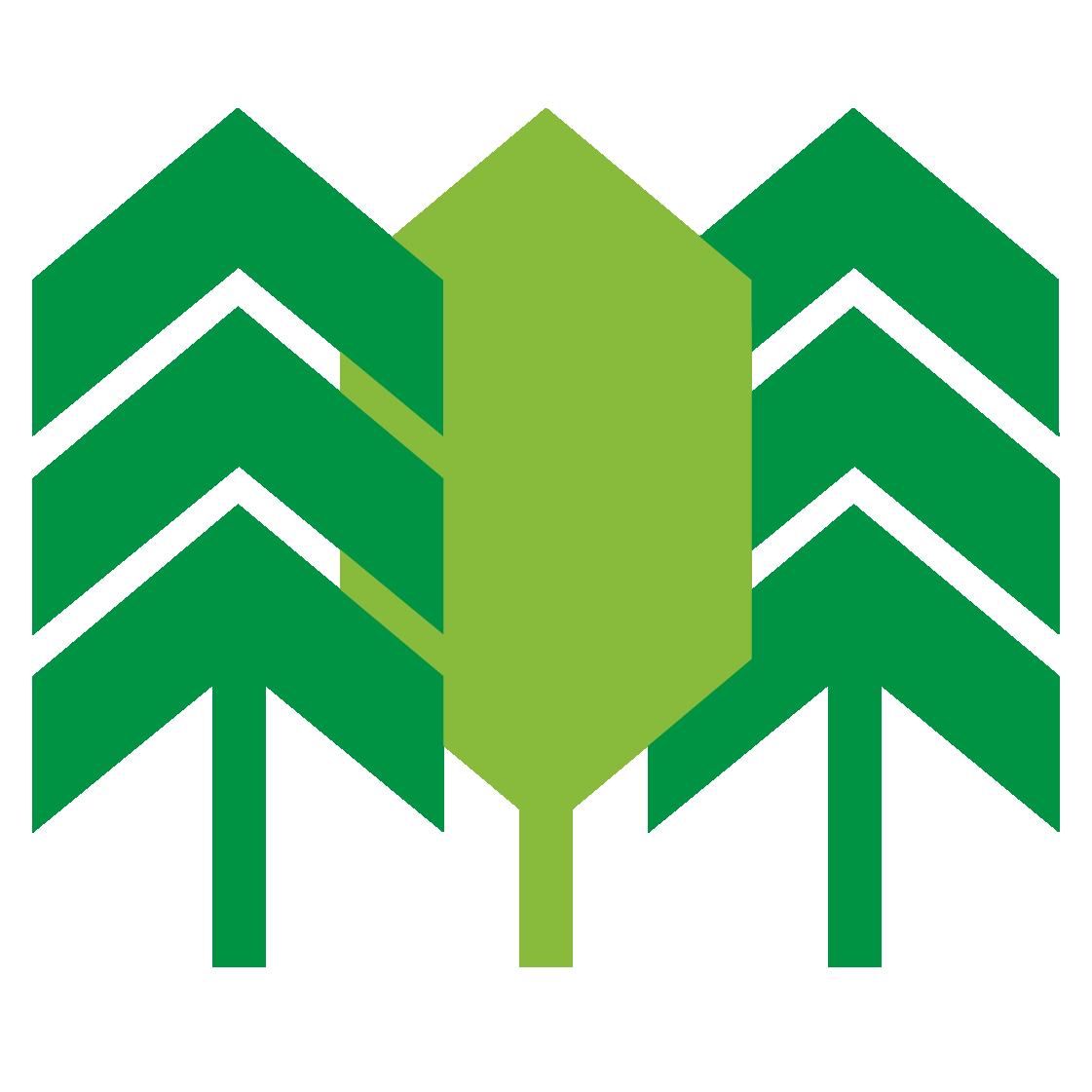 Skog & Virke